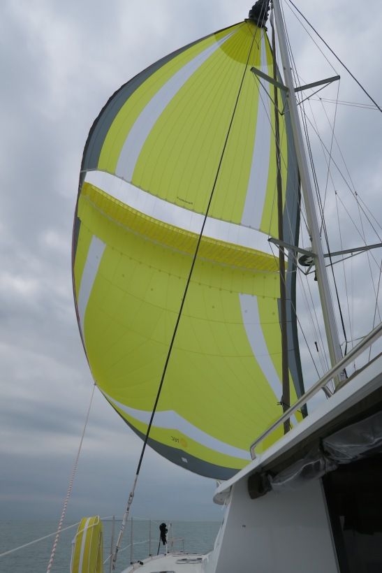 cheeky-monkey-parasailor-fountaine-pajot-helia-44
